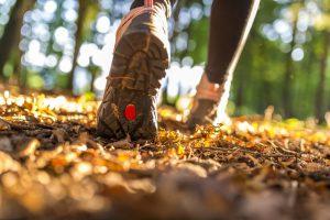 Fuß, Schritt, Schuh, Laufen