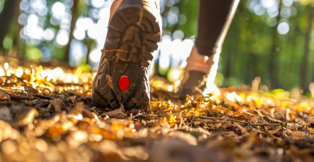 Schritte in Meter umrechnen: Wie viele Meter legen Sie am Tag zurück?