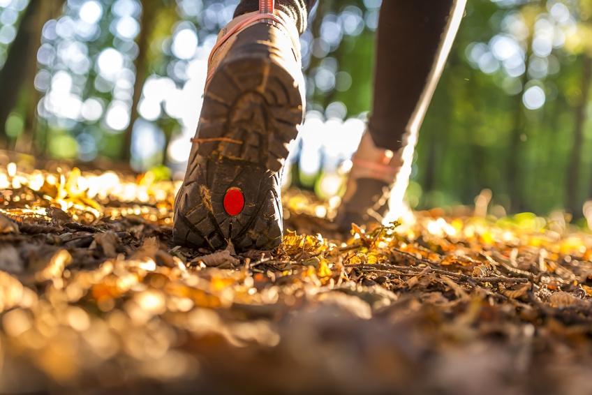 Schritte In Meter Umrechnen Ermitteln Sie Ihre Tägliche Strecke